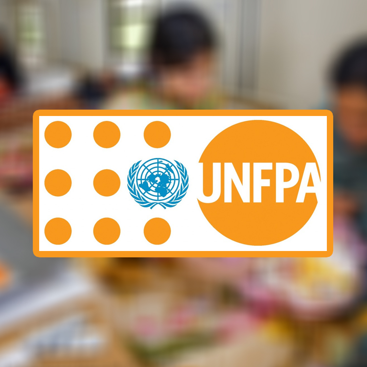 UNFPA – KZR IT Consulting Project